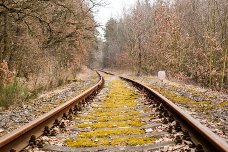 forest railway: Railway line passing through the autumn forest Stock Photo