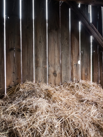 Straw in the old barn with timber wall