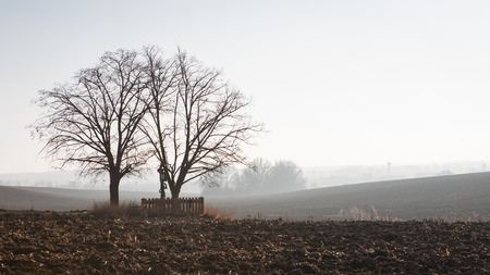 bleak: Lonely trees and wooden crucifixion in the autumn plowed field Stock Photo