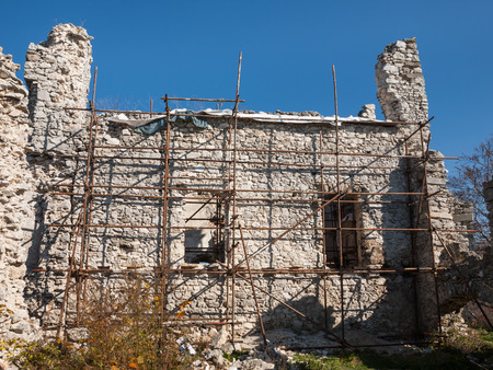 Scaffold for the reconstruction