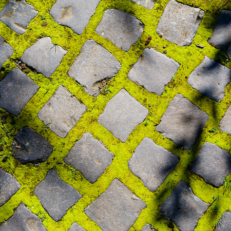 Stone pavement with green moss and grass in between 스톡 사진
