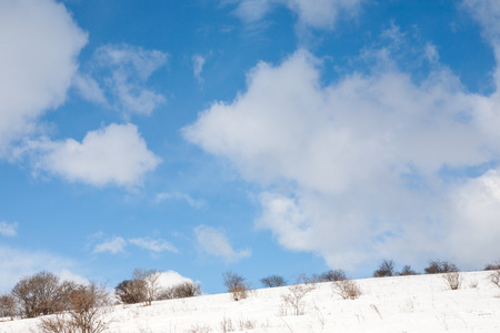 Winter scene with clouds and leafless trees on the hill