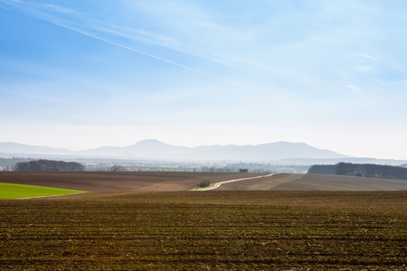 cultivated land: Sunny spring day with blue sky above the road between cultivated land with mountains in the background
