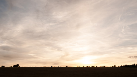Silhouette of grazing horses in the sunset sky background