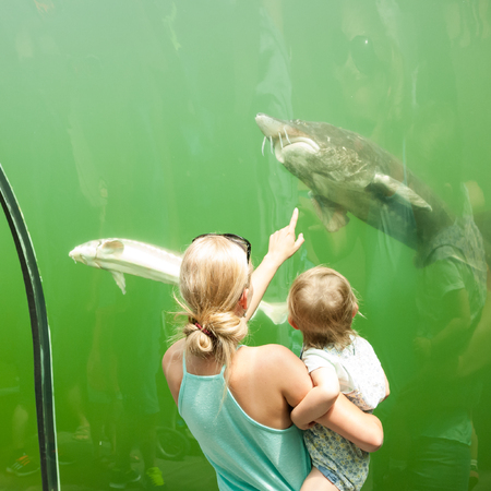 Mother and daughter looking at fish in an freshwater aquarium Stock Photo