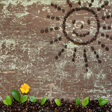 Sun shaped coffee beans and ground full of coffee with green leaves and yellow flower Stock Photo