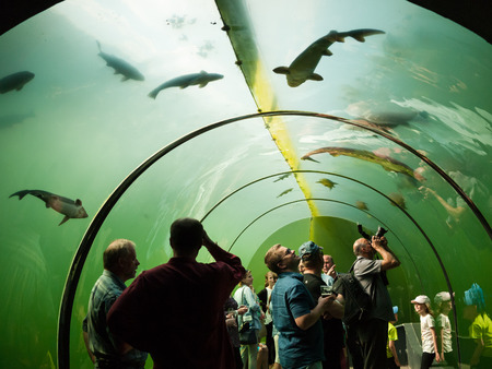 MODRA, CZECH REPUBLIC - MAY 21: Under water glass tunnel in botanical and freshwater exhibits Living Water - Modra on May 21, 2016, South Moravia Region, Czech republic Editorial