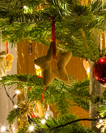 Gingerbread star hanging on a christmas tree branch Stock Photo