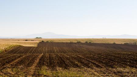 Sommer wellig gestreiften Landschaft mit braunen gepflügten Feld Lizenzfreie Bilder
