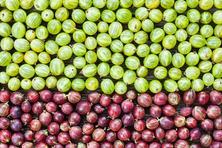Background of green and red gooseberries lying on table. Top view of tasty healthy berries