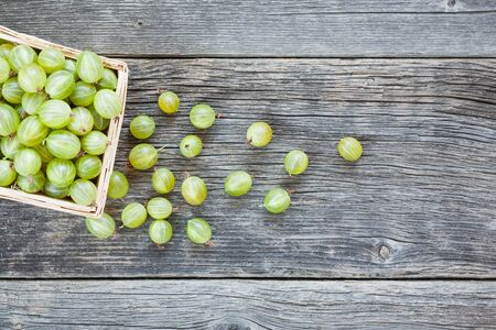 Fresh picked gooseberries in wicker basket on wooden background. Summer food top view Фото со стока