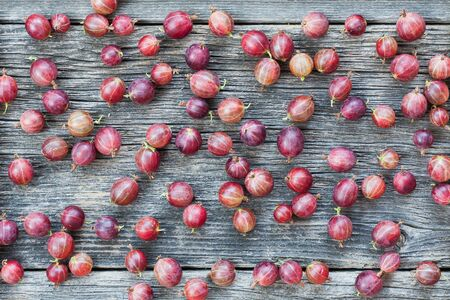 Fresh and healthy summer fruit background of scattered red gooseberries Stock Photo