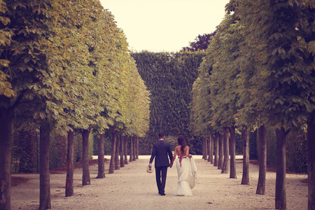 simetric: Back of a bride and groom walking in park