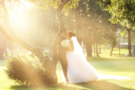 groom and bride: Bride and Groom surrounding by natural golden sunlight Stock Photo