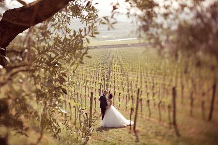 hombre disparando: La novia y el novio en un viñedo
