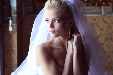 nature and beauty: Gorgeous bride with veil posing Stock Photo