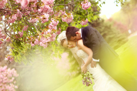 Bride and groom embracing in the park Stock Photo
