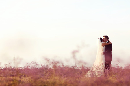 multi story: Bride and groom embracing in a field