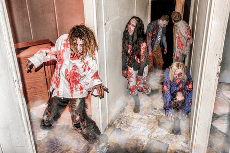photo shoot: Zombie apocalipse photo shoot Stock Photo