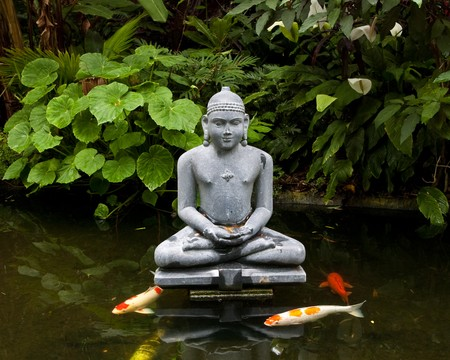 koi fish pond: Statue of Buddha in a reflecting pond