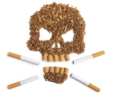 Death sign skull made of Tobacco isolated on white Smoking metaphor Stock Photo - 17821009
