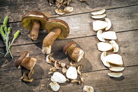 teas: Boletus Edilus mushrooms on a wooden table  – fresh dried and sliced, mountain teas Sideritis Scardica