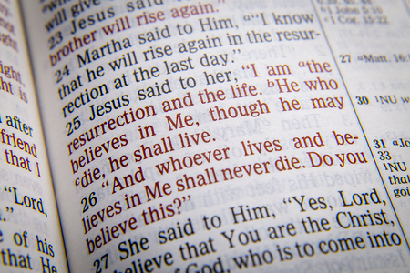 vangelo aperto: Io sono la risurrezione e la vita. Chi crede in me, anche se muore, vivrà il testo biblico di Giovanni 9:35, la Bibbia. Gli effetti visivi per sottolineare il messaggio. macro