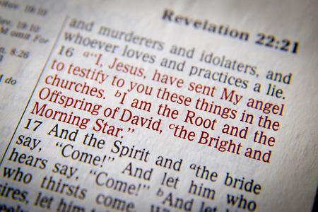 vangelo aperto: Io sono la radice e la progenie di David, il luminoso e il testo Morning Star Bibbia da Apocalisse 22:16, la Bibbia. Gli effetti visivi per sottolineare il messaggio. macro Archivio Fotografico