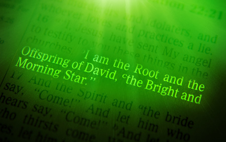 emphasize: I am the Root and the Offspring of David, the Bright and Morning Star Bible text from Revelation 22:16, the Bible. Visual effects to emphasize the message. Macro Stock Photo