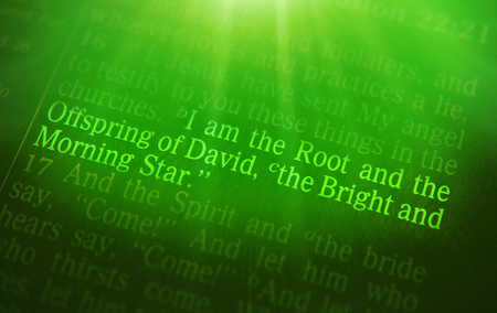 revelation: I am the Root and the Offspring of David, the Bright and Morning Star Bible text from Revelation 22:16, the Bible. Visual effects to emphasize the message. Macro Stock Photo