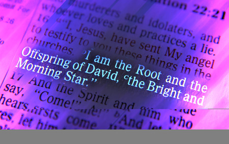 I am the Root and the Offspring of David, the Bright and Morning Star Bible text from Revelation 22:16, the Bible. Visual effects to emphasize the message. Macro Stock Photo