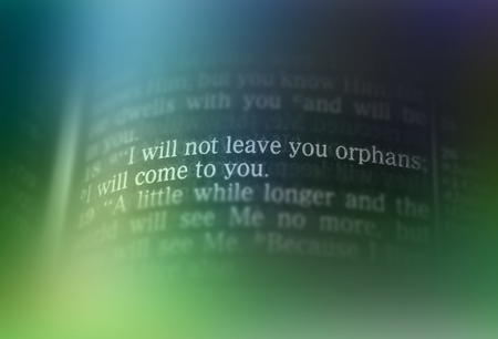 emphasize: I will not leave you orphans; I will come to you Bible text from John 14:18, the Bible. Visual effects to emphasize the message. Macro
