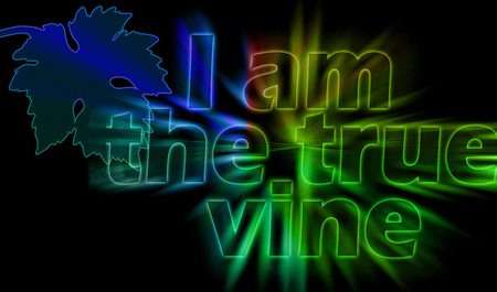 I am the True Vine - the statement of Jesus with shining bursting effect on dark background - John 15:1