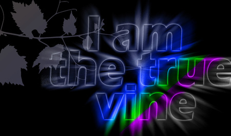 I am the True Vine - the statement of Jesus with shining bursting effect on dark background - John 15:1