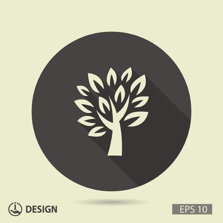 arbol roble: Pictograma del árbol Vectores
