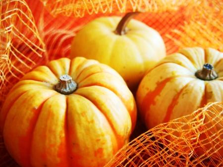 autmn: Halloween s pumpkin