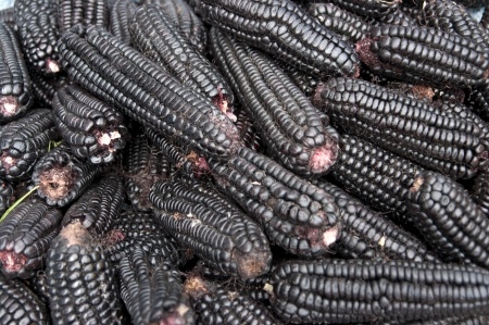 Black corn sold at a street market