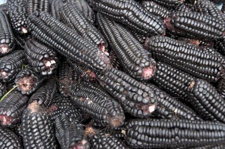 street market: Black corn sold at a street market