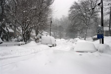 February 2010, record blizzard in the Washington DC area
