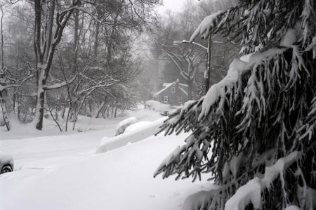 February 2010, record blizzard in the Washington DC area