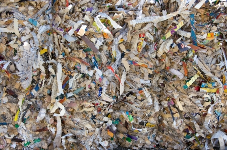 Shredded books and magazines for recycling Standard-Bild
