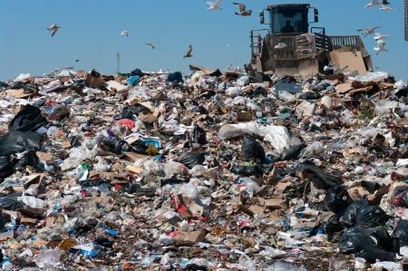 Caterpillar compactor working in a landfill 版權商用圖片