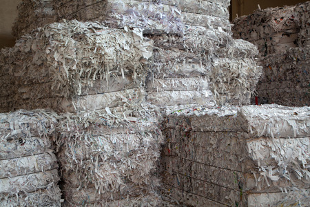 landfill site: White paper packed in bales for recycling