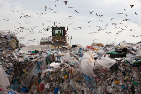 Truck managing household garbage on a landfill site Standard-Bild