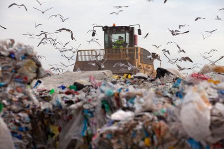 Truck flattening household garbage on a landfill waste site Standard-Bild