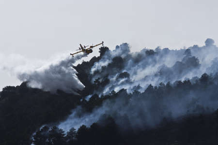 humo: Firefighter aircraft in forest fire Stock Photo