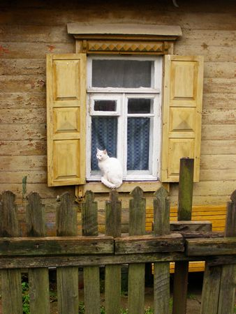 The cat sits at a window of the old house