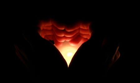 heard: candle in the heard