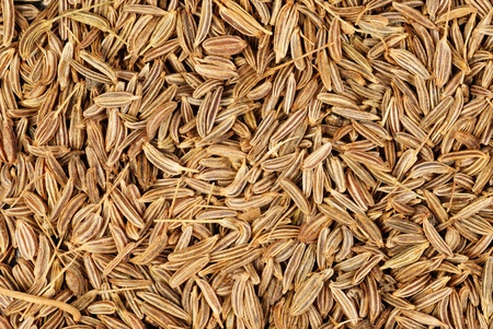 cumin seeds macro as background  photo