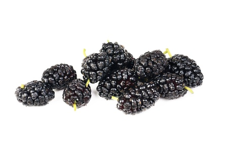 mulberry fruits isolated on white macro
